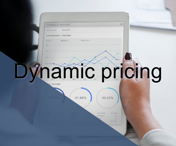 Dynamic Pricing and dynamic reacting in pricing