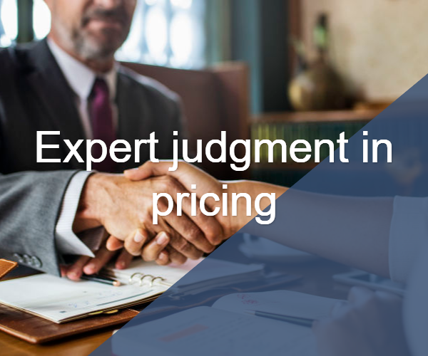 Expert Judgement