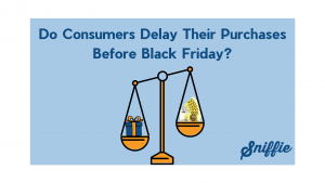 Do Consumers Delay Their Purchases Before Black Friday?