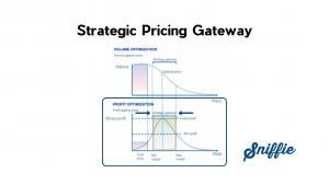 Strategic Pricing Gateway – What is it and how does it work?