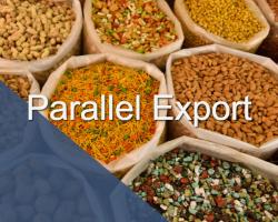 parallel-export